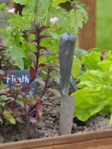 jardin-potager-tendance-outdoor-2020-constructeur-de-maisons-individuelles-périgord-maisons-bois