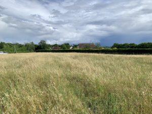 terrain-a batir-lot-reilhaguet-perigordmaisonsbois-bellevuedegagee-maisonossaturebois-chalet-constructionbois