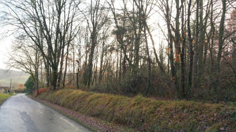 Chant rac terrain b tir p rigord maisons bois for Constructeur maison individuelle 24000