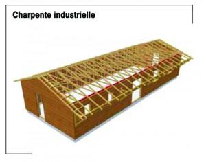 Techniques de construction charpente industrielle