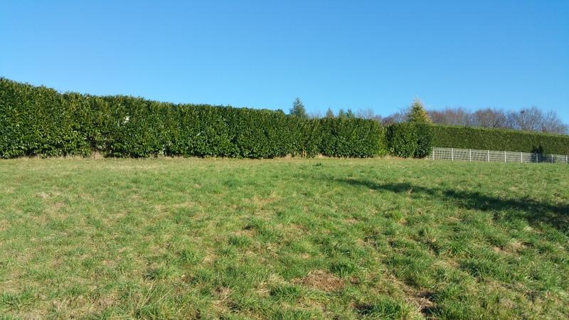 terrain à bâtir Périgueux (24), Périgord Maisons Bois, constructeur de maisons bois, en Dordogne